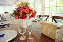 B_Smith, T&R; Reception Decor 2; Private Residence; Kathleen Solarczyk Photographer